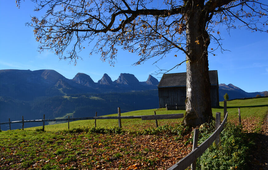 Hiking Toggenburg, at Hotel Hirschen Wildhaus